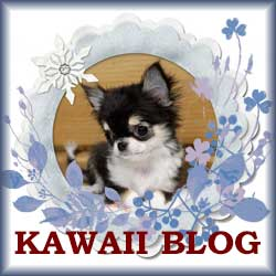 KAWAII BLOG